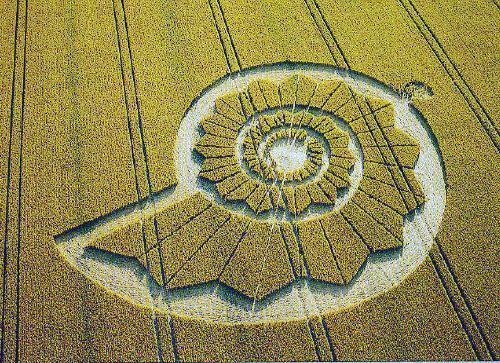 crop circle Pewsey White Horse SA